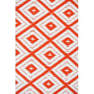 Arabian Nights Orange/White Indoor/Outdoor Area Rug