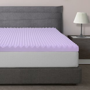 Gilkes Egg Crate Memory Foam Mattress Topper by Alwyn Home Wonderful