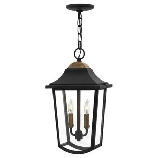 Burton 2-Light Outdoor Hanging Lantern