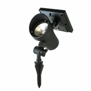 Best Solar Lights 1 Light LED Flood/Spot Light