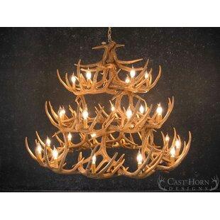 Millwood Pines Xanthe 27-Light Novelty Chandelier