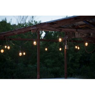 String Light Company 12-Light 24 ft. Globe String Lights
