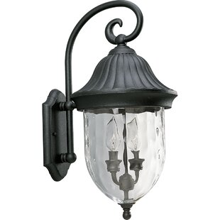 Alcott Hill Triplehorn 2-Light Incandescent Outdoor Wall Lantern