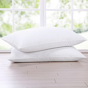 Potter Natural Medium Down and Feather Standard Bed Pillow (Set of 2)