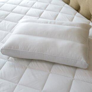 PostureFit Medium Standard Bed Pillow