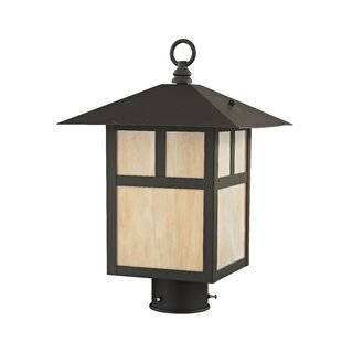 Order Carla Outdoor 1-Light Lantern Head By Darby Home Co