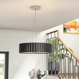 Brayden Studio Canavan 4-Light Pendant