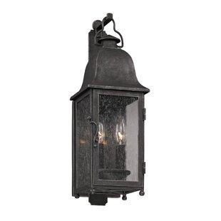 Darby Home Co Susannah 2-Light Outdoor Wall Lantern