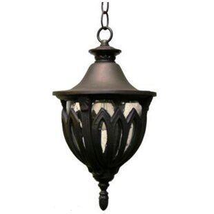 Compare Phillipstown 3-Light Outdoor Hanging Lantern By Alcott Hill