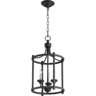 Stephany 3-Light Cage Entry Lantern Pendant by Charlton Home