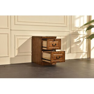 Sarthak 2 Drawer Vertical Filing Cabinet by Darby Home Co