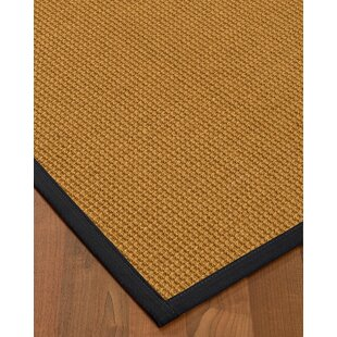 Price comparison Aula Border Hand-Woven Brown/Black Area Rug ByBayou Breeze