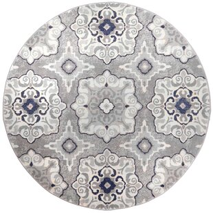 Caffey Gray Area Rug by Andover Mills