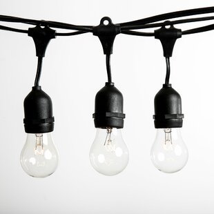 50 ft. 25-Light Standard S..