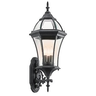 Darrell 3-Light Outdoor Sconce
