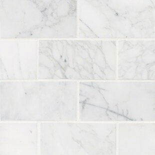 Calacatta Cressa Honed 3 X 6 Marble Subway Tile In White