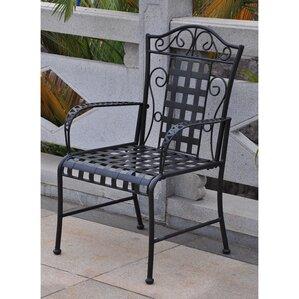 Abbottsmoor Patio Dining Chair (Set Of 2)