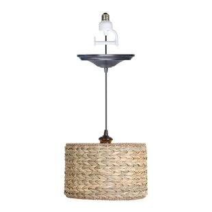 Worth Home Products Nature 1-Light Drum Pendant