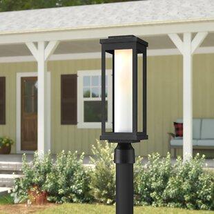 Cavazos Outdoor 1-Light LED Black Lantern Head by Latitude Run