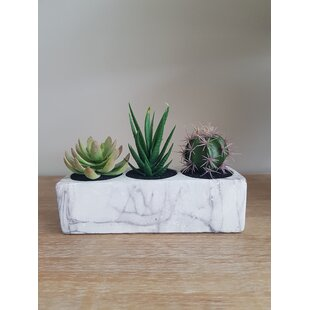 3 Artificial Succulent In Planter Set By Bay Isle Home