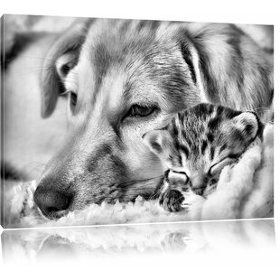 Dreaming Kitten Next To A Dog Wall Art On Canvas