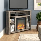Sunbury TV Stand for TVs up to 50 with Electric Fireplace Included by Beachcrest Home™
