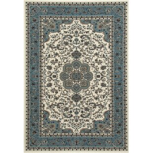 Buy Lang Aqua Area Rug By Astoria Grand