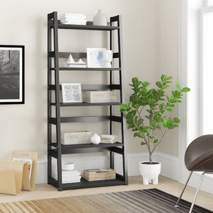Hubbardston Ladder Bookcase by Zipcode Design