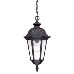 Astoria Grand Shaw 1-Light Outdoor Hanging Lantern