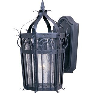 Astoria Grand Samanda 1-Light Outdoor Wall Lantern