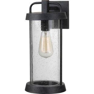 Williston Forge Arin 1-Light Outdoor Wall Lantern