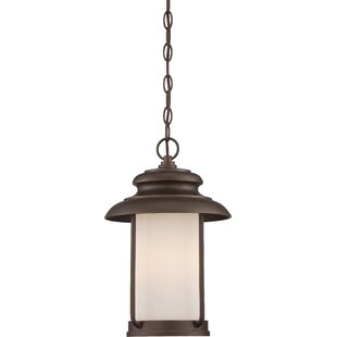 Tindall 1-Light Outdoor Pendant