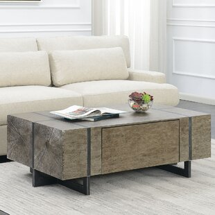 Affordable Price Nieves Coffee Table with Storage By Brayden Studio
