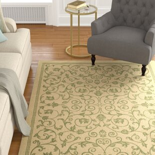 Bexton White Ivory / Green Indoor/Outdoor Area Rug
