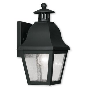 Goodhue 1-Light Outdoor Wall Lantern By Alcott Hill Outdoor Lighting
