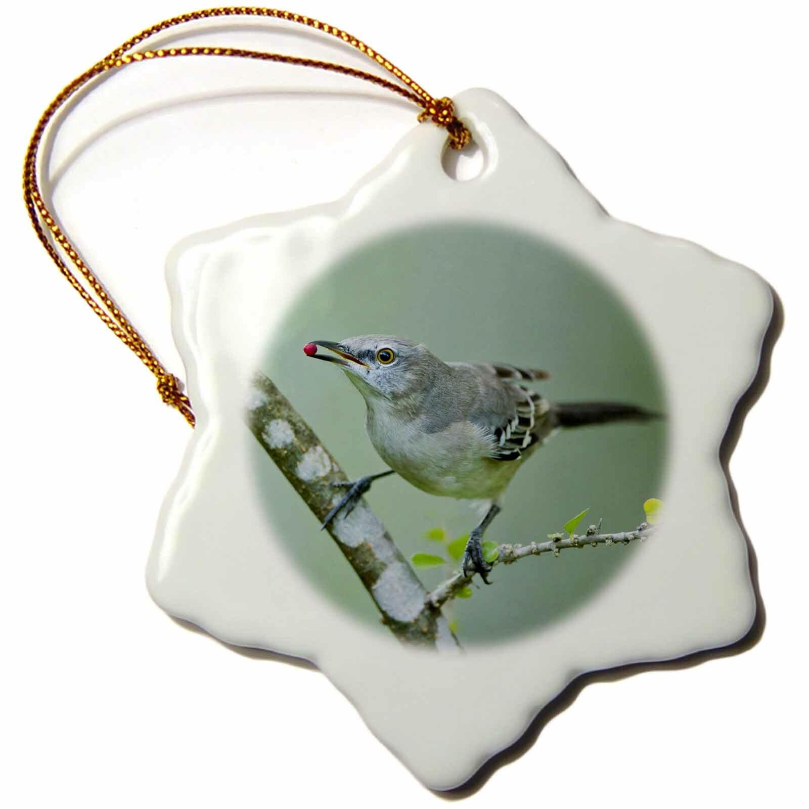 The Holiday Aisle Northern Mockingbird Feeding On Brush Texas Usa Snowflake Holiday Shaped Ornament Wayfair
