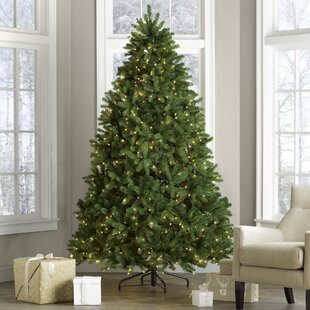 75 green spruce artificial christmas tree with 750 clear lights - 75 Ft Slim Christmas Tree
