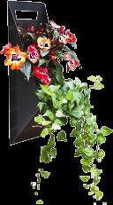 Wall Planters & Vertical Gardens