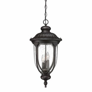 Fleur De Lis Living Angie Hanging Lantern