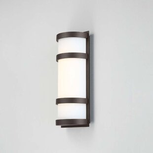 Ferriera 1-Light LED Outdoor Sconce