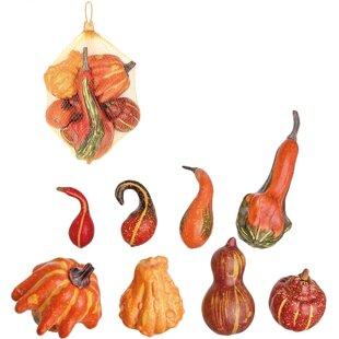 Decorative Gourds | Wayfair on decorative gourd lamps, decorative gourd art, decorative gourd birdhouses, decorative gourd dolls, decorative gourds and squash, decorative gourd vessels,