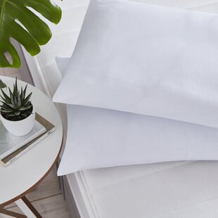 Pillow By Silentnight