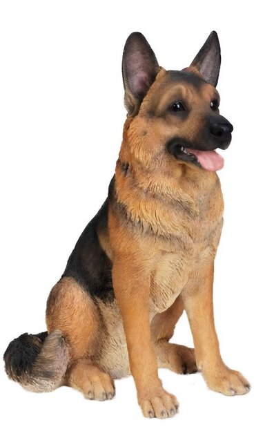Wonderful German Shepherd Chubby Adorable Dog - Sitting+Dog+F+German+Shepherd+Statue  Photograph_708275  .jpg