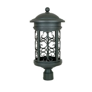 https://secure.img1-fg.wfcdn.com/im/98848238/resize-h310-w310%5Ecompr-r85/3620/36208246/cole-1-light-lantern-head.jpg