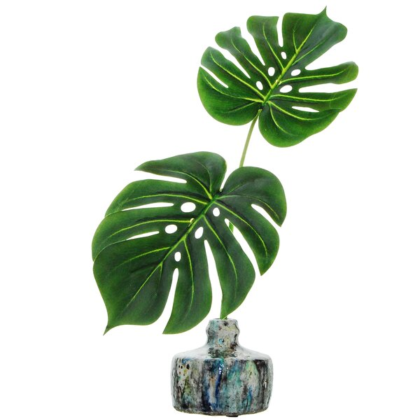 Bay Isle Home Tropical Leaves Desktop Foliage Plant In