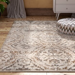 Ronin Copper Area Rug byBungalow Rose