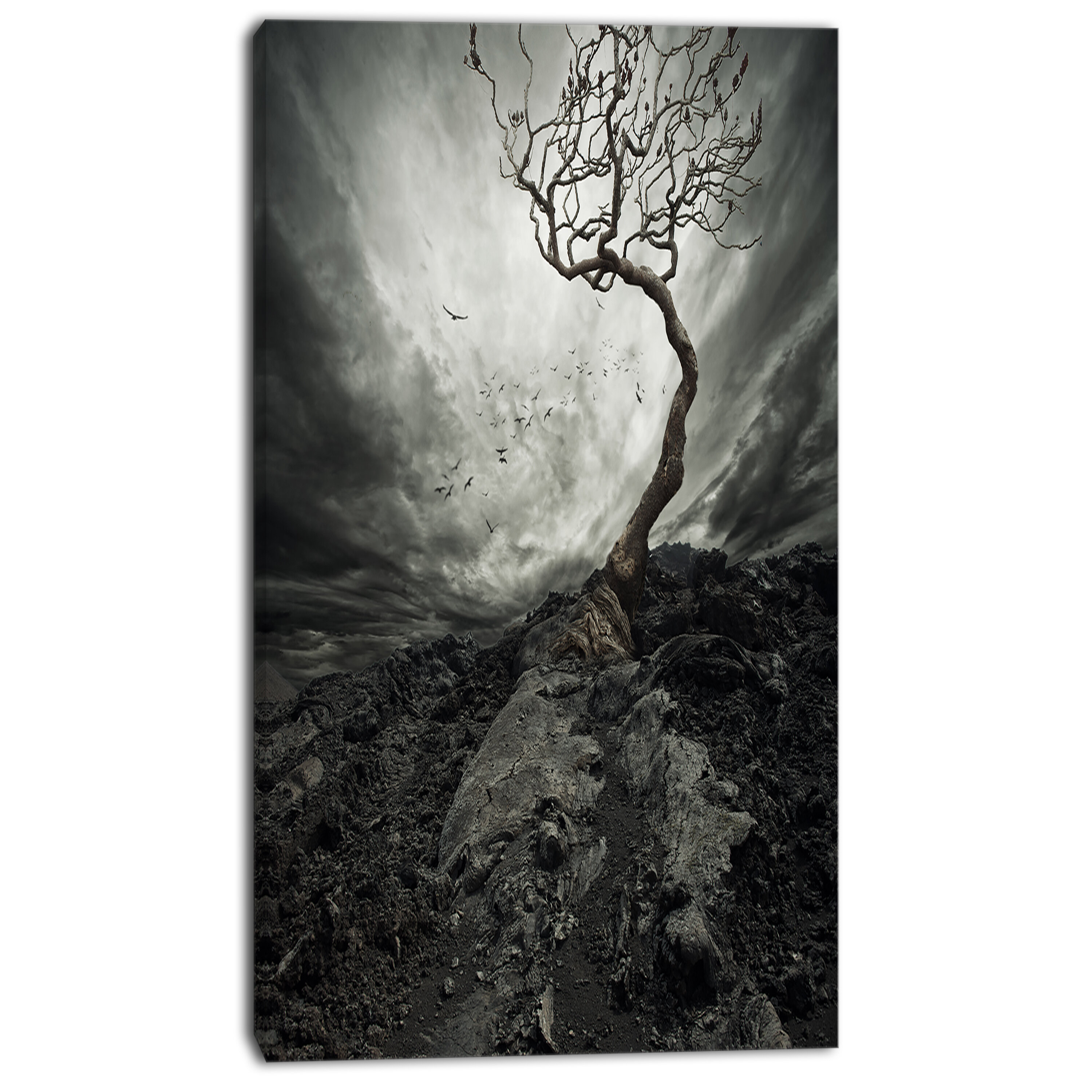 Designart Lonely Tree Under Dramatic Sky Landscape Photographic Print On Wrapped Canvas Wayfair