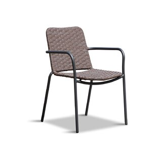 Ironwood Dining Arm Chair by Wrought Studio
