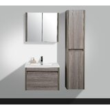 Labrador 30 Wall-Mounted Single Bathroom Vanity by Orren Ellis