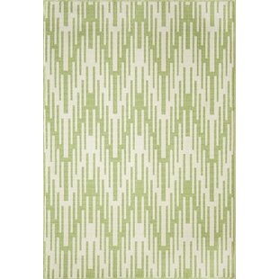Amora Hand-Woven Green Indoor/Outdoor Area Rug